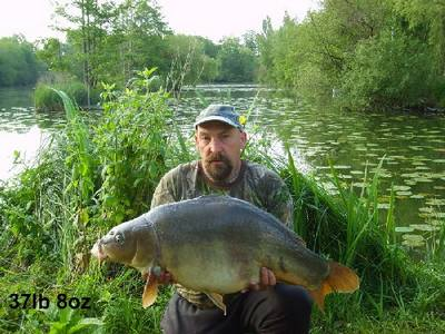 Pads Lake peche a la carpe en normandie